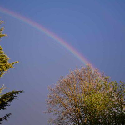 Regenbogen1a