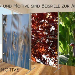 Trennwand-Foto-Motive