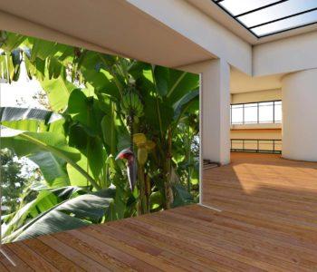 C. Kaminski: Kreative Wandgestaltung, Design Trennwand, moderner Sichtschutz